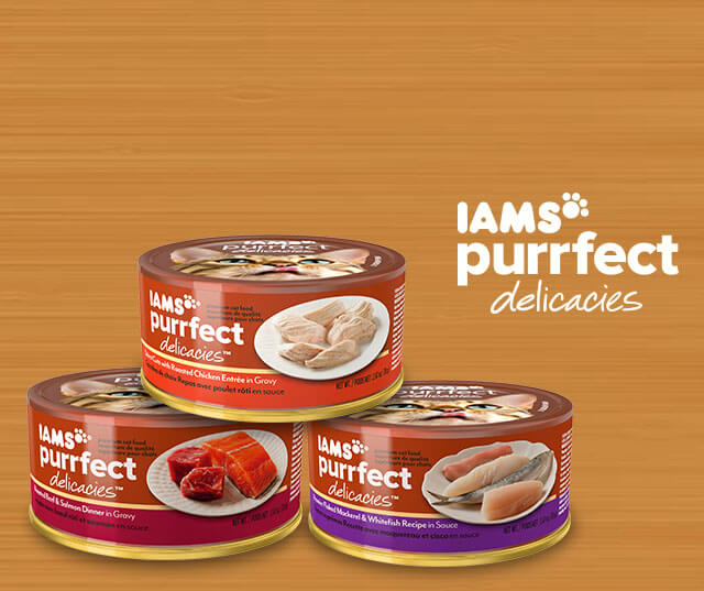 Iams Purrfect Delicacies